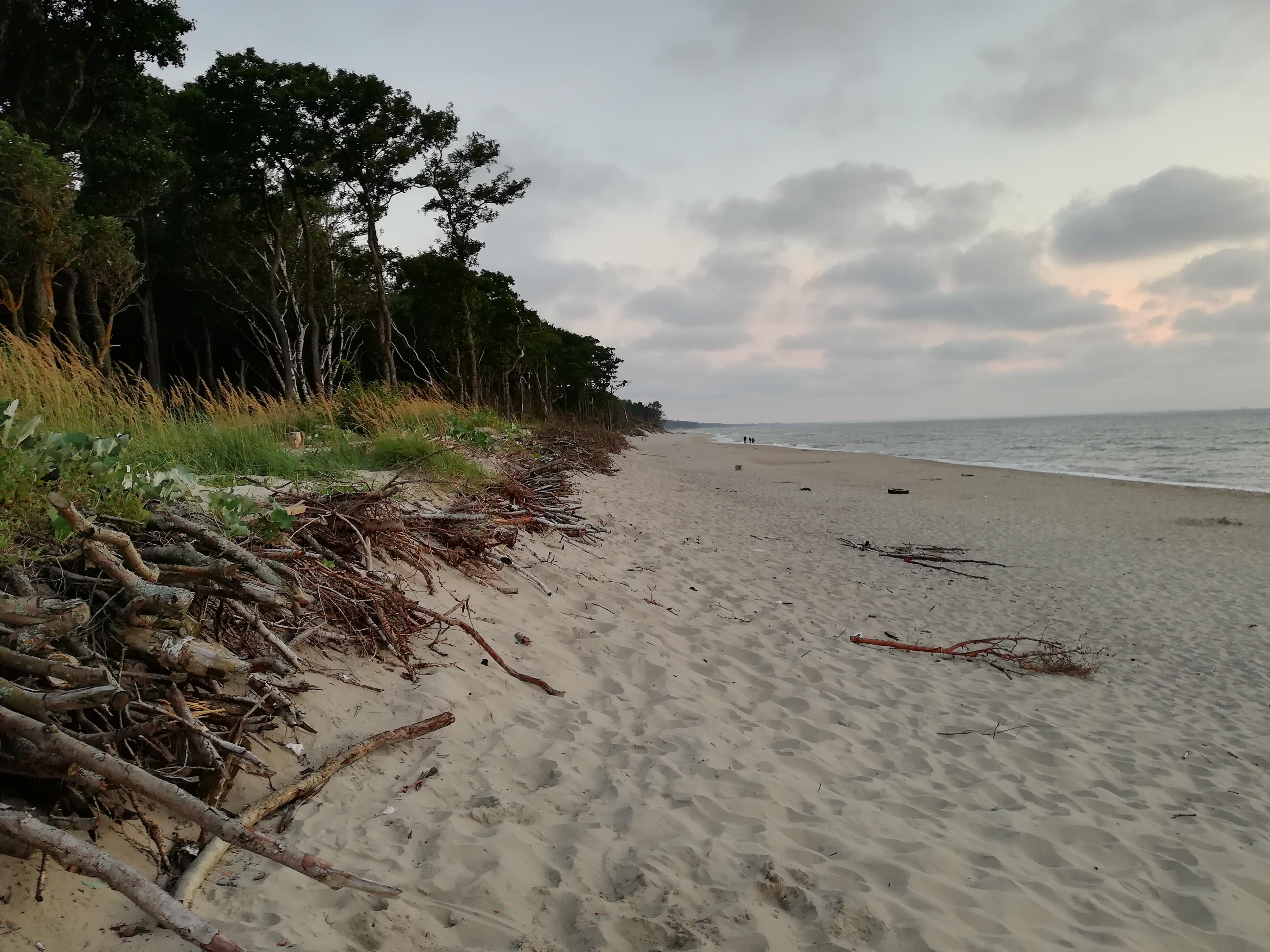 Куршская коса фото пляж